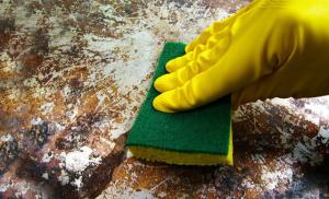 Penggunaan Cairan Antibakteri di Rumah