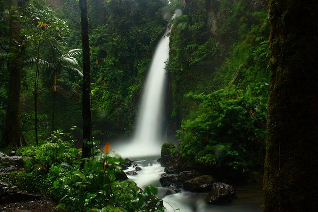 Nikmati Ketenangan Danau Situ Gunung Dan Curug Sawer