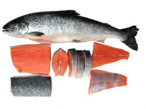 Makanan Tinggi Protein Dari laut