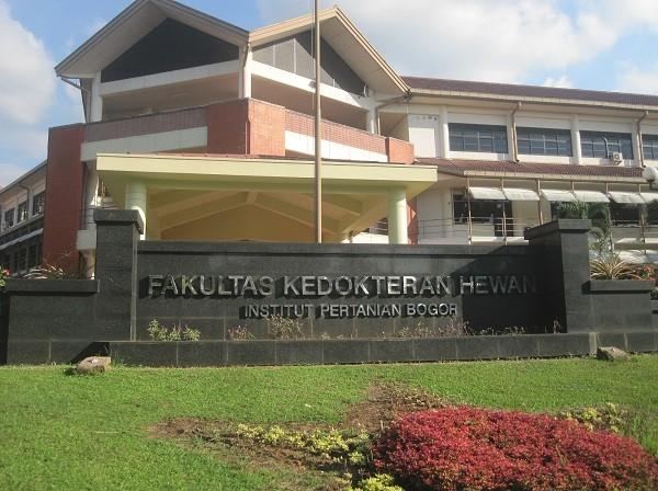 IPB Telah Berhasil Mencetak 7.303 Dokter Hewan
