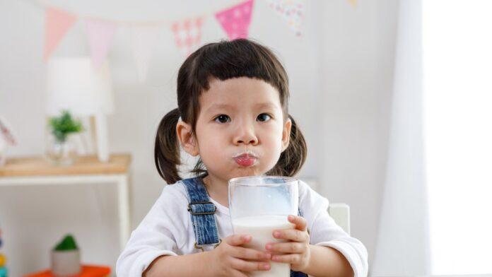 laktosa pada susu anak